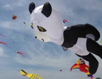 38th Annual Rogallo Kite Festival
