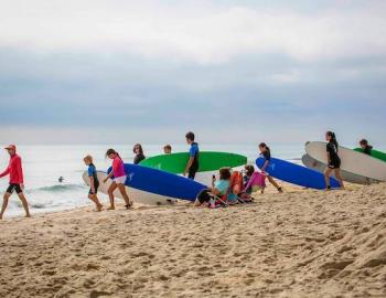 Farmdog Surf School