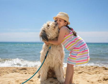 dog and kid on beach