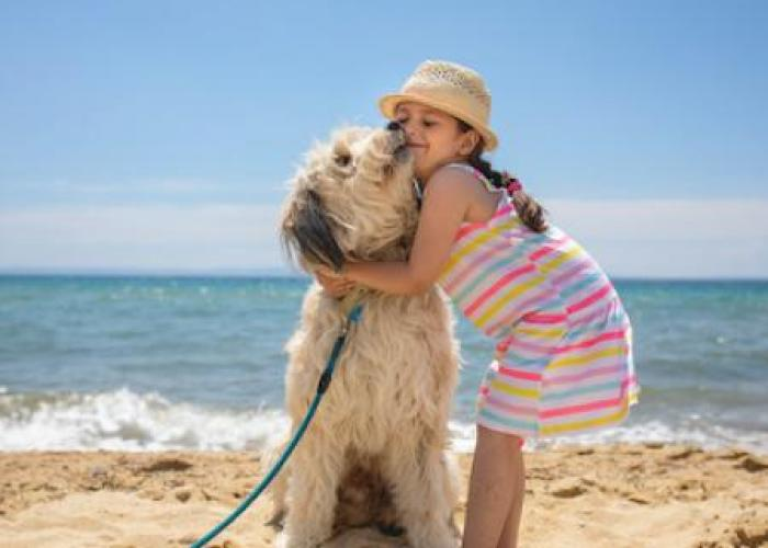 pet friendly obx rentals