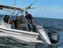 Giant Bluefin Tuna Recently Caught Off Outer Banks Coast