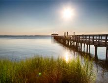 OBX Maritime Forests