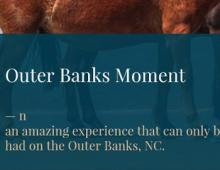 OBX Moment Entries