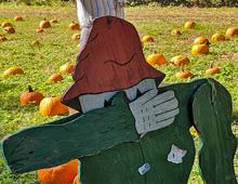 A Visit To The Grandy Pumpkin Patch