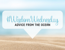 #WisdomWednesday - Advice From The Ocean